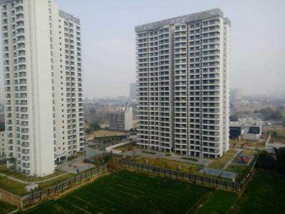 Gallery Cover Image of 1760 Sq.ft 3 BHK Apartment for rent in Sector 106 for 16000