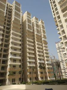 Gallery Cover Image of 1350 Sq.ft 3 BHK Independent Floor for buy in Phase 2 for 4500000