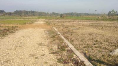 1122 Sq.ft Residential Plot for Sale in Prem Nagar, Dehradun