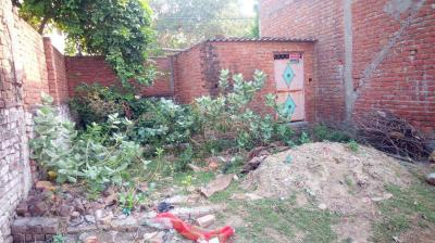 Gallery Cover Image of  Sq.ft Residential Plot for buy in Ram Bagh for 550000