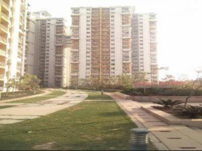 Gallery Cover Image of 1428 Sq.ft 2 BHK Apartment for rent in BPTP Princess Park, Sector 86 for 11000
