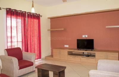 Living Room Image of PG 4643812 Bellandur in Bellandur