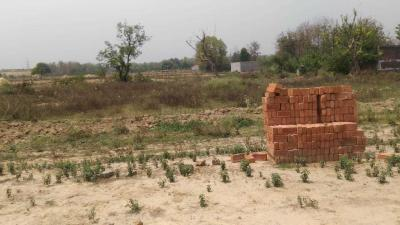 Gallery Cover Image of  Sq.ft Residential Plot for buy in Roberts Lines for 1000000