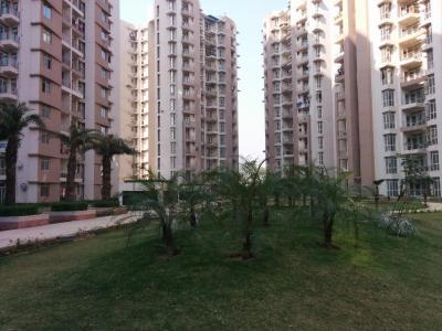 Gallery Cover Image of 1295 Sq.ft 2 BHK Apartment for rent in Omicron I Greater Noida for 11000