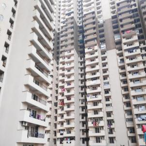 Gallery Cover Image of 1600 Sq.ft 3 BHK Apartment for rent in Pandav Nagar for 20000