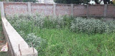1040 Sq.ft Residential Plot for Sale in Danapur, Patna