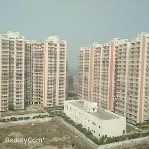 Gallery Cover Image of 1343 Sq.ft 2 BHK Apartment for rent in Sector 77 for 9500