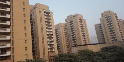 Gallery Cover Image of 2460 Sq.ft 3 BHK Apartment for rent in Sector 54 for 100000