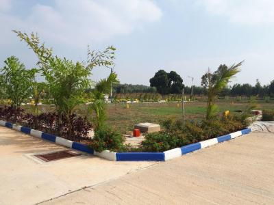 Gallery Cover Image of 1200 Sq.ft Residential Plot for buy in Hoskote for 1500000