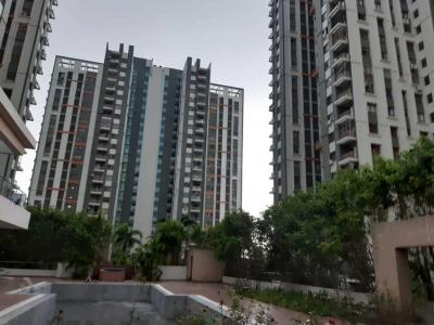 Gallery Cover Image of 1336 Sq.ft 3 BHK Apartment for rent in TATA Eden Court Primo, New Town for 30000