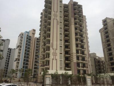 250 Sq.ft Residential Plot for Sale in Sector 58, Sonepat