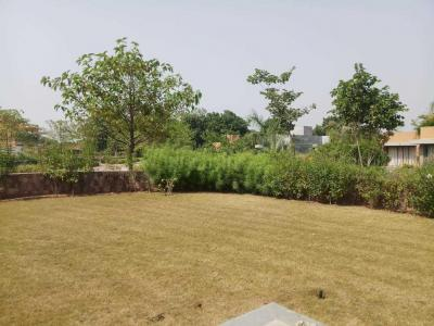 Gallery Cover Image of  Sq.ft Residential Plot for buy in Gopalpura for 27000000