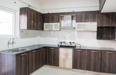 Kitchen Image of PG 4643499 Whitefield in Whitefield