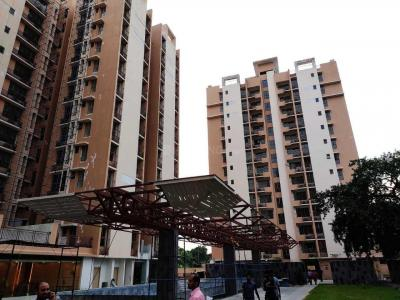 Gallery Cover Image of 999 Sq.ft 3 BHK Apartment for buy in Botanical Garden Area for 6500000