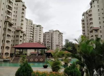 Gallery Cover Image of 1175 Sq.ft 2 BHK Apartment for rent in Springfields Apartments, Harlur for 32000