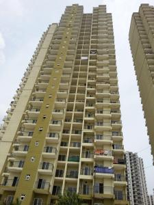 Gallery Cover Image of 1129 Sq.ft 2 BHK Apartment for rent in Noida Extension for 10000