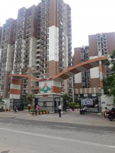 Gallery Cover Image of 2250 Sq.ft 4 BHK Apartment for rent in Sector 46 for 28000
