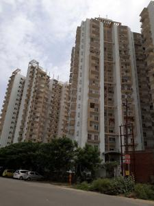 Gallery Cover Image of 1345 Sq.ft 3 BHK Apartment for rent in Sector 78 for 15000