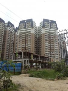Gallery Cover Image of 1595 Sq.ft 3 BHK Apartment for buy in Noida Extension for 6485000