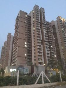 Gallery Cover Image of 2190 Sq.ft 4 BHK Independent House for rent in Mahagun My Woods, Noida Extension for 14000