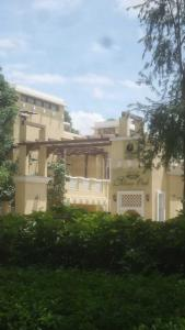 Gallery Cover Image of 3800 Sq.ft 4 BHK Independent House for rent in Prestige Silver Oak, Whitefield for 80000
