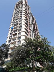 Gallery Cover Image of 550 Sq.ft 1 BHK Apartment for rent in Jacob Circle for 31000