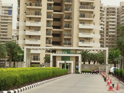 Gallery Cover Image of 1250 Sq.ft 2 BHK Apartment for rent in Sector 137 for 13000