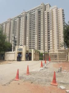 Gallery Cover Image of 6400 Sq.ft 4 BHK Apartment for rent in Sector 42 for 375000