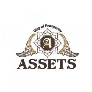 Assets Reality logo