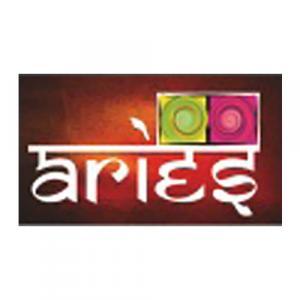 Aries Infratech logo
