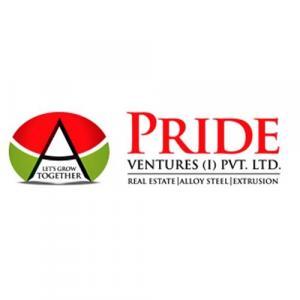 Pride Venture (I) Pvt. Ltd. logo