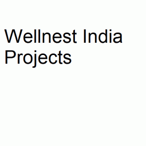 Wellnest India Projects logo