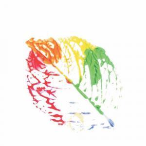 Magus Consortium Orchid Avenue  logo