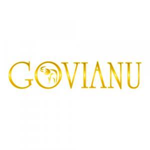 Govianu Wealth Management logo