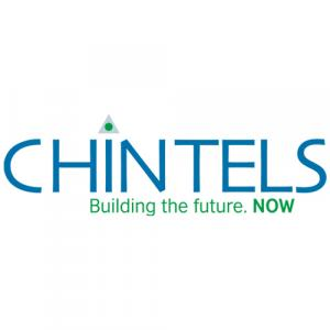 Chintels India Ltd logo