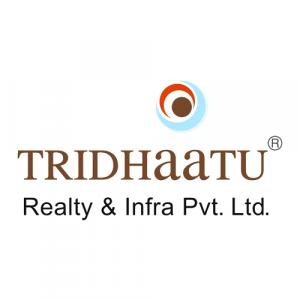 Tridhaatu Realty & Infra Pvt Ltd logo