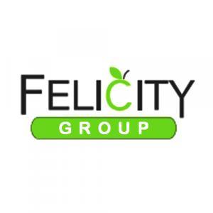 Felicity Concepts Pvt. Ltd. logo