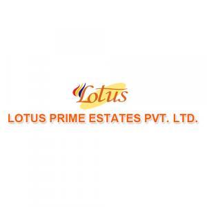 Lotus Prime Estates logo
