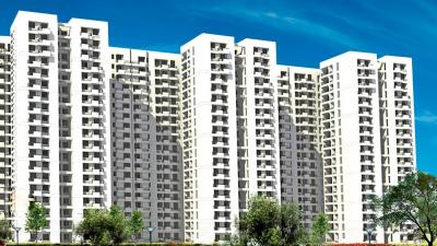 Gallery Cover Image of 1050 Sq.ft 2 BHK Apartment for rent in Kensington Park Apartments, Sector 133 for 10000