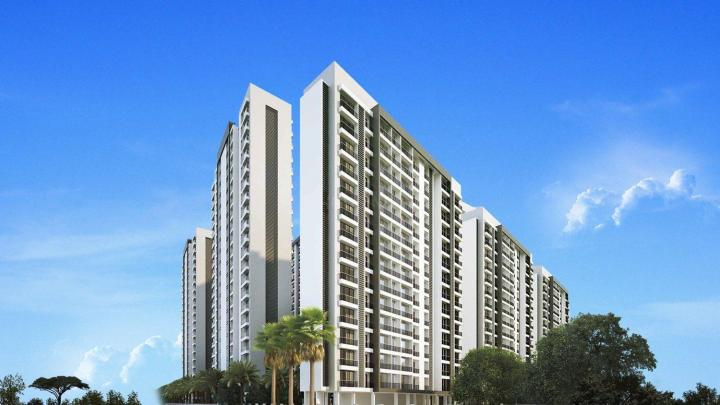 Gallery Cover Pic of Dudhwala Ayan Residency Phase 1