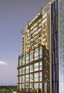 Gallery Cover Pic of Tulip 7th Avenue