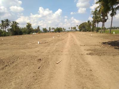 Residential Lands for Sale in VS Anjani Nagar 2