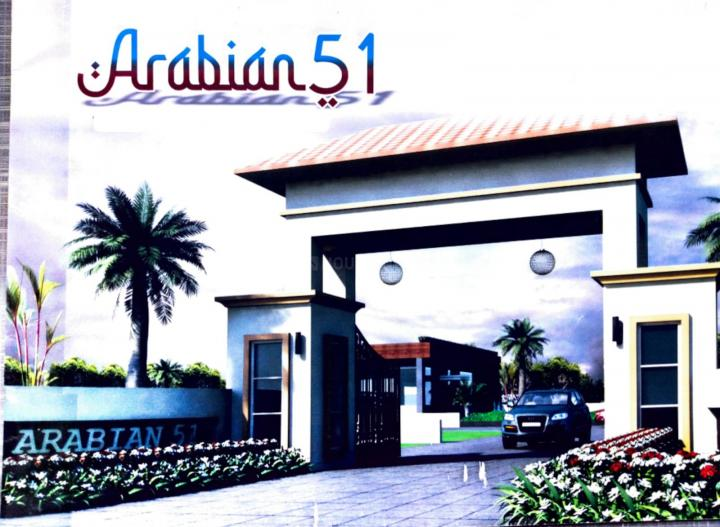 Gallery Cover Pic of Arabian 51