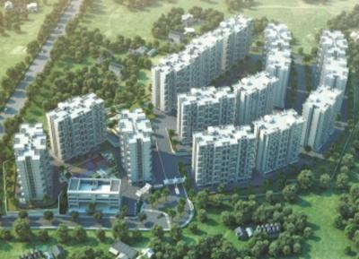 Gallery Cover Pic of Pate Life Maxima Phase 1