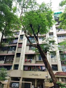 Gallery Cover Image of 660 Sq.ft 2 BHK Apartment for rent in Daffodil, Kandivali East for 25000