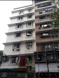 Swaraj Raj Tutorials Apartment