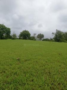 Residential Lands for Sale in Infra