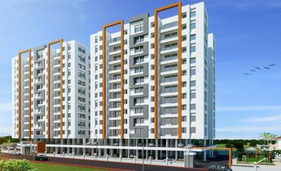 Bhandari Associates BA Iris