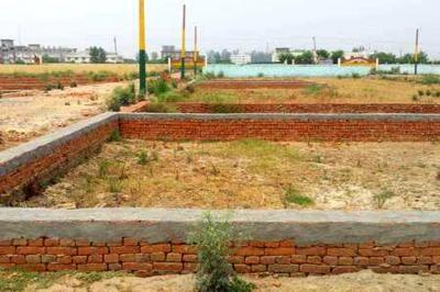 Gallery Cover Pic of Ambika Garden