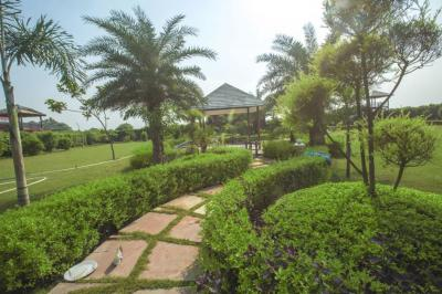 Gallery Cover Pic of Dkrrish Green Beauty Farms